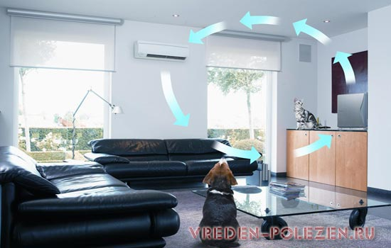Биполярные ионизаторы делают воздух в помещении максимально полезным