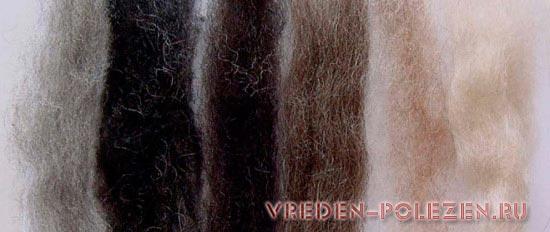 Различная степень седины волос