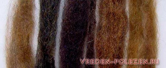 Окрашенные седые волосы напополам басмой и хной