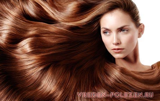Краска или хна для волос что лучше
