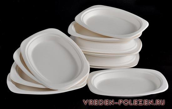 Альтернативой пластику на сегодня выступает экологичная одноразовая посуда