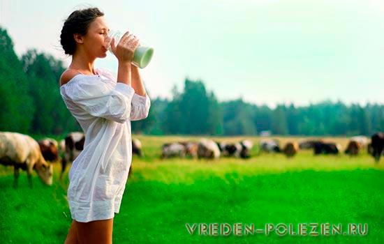 Всеми целебными свойствами обладает лишь парное молоко
