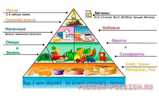 Перечень продуктов для вегетарианцев и дозировки необходимых веществ