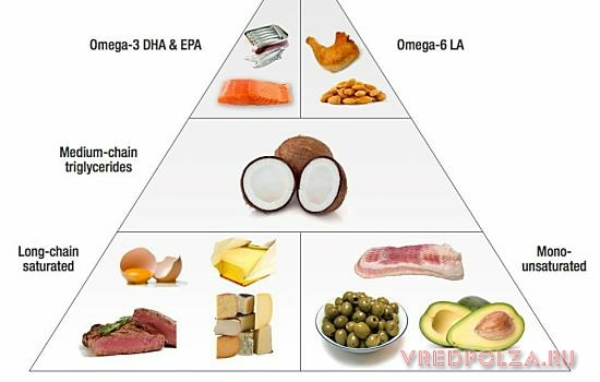 Колоссальное количество полиненасыщенных кислот содержится в рыбьем жире, красной рыбе и рапсовом масле