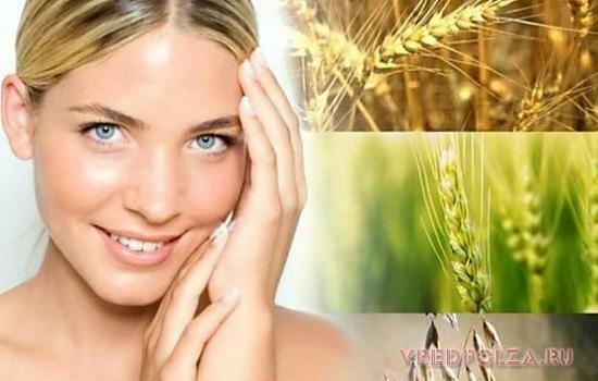Пророщенная пшеница омолаживает кожу, дарит энергию и благотворно влияет на обменные процессы в организме