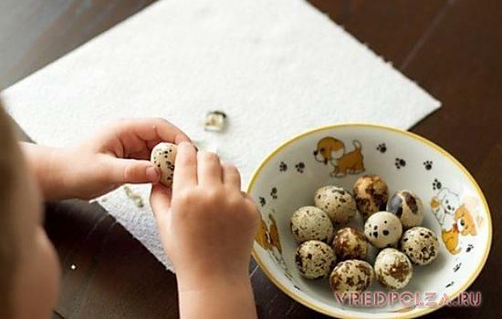 С осторожностью перепелиные яйца следует вводить в рацион детей. Особенно это касается малышей, у которых выявлена аллергия на белок