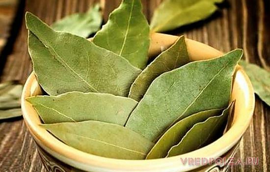 средство для лечения суставов запаренный лавровый лист