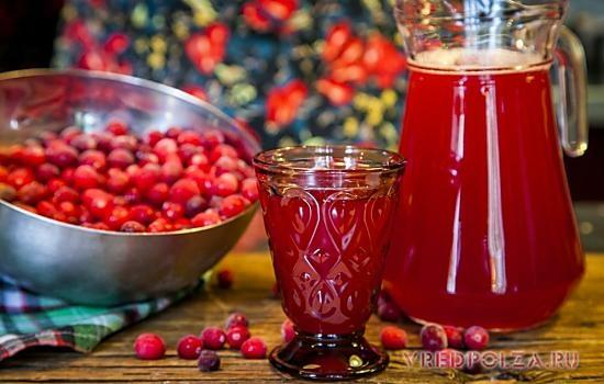 Клюква ягоды полезные свойства и противопоказания