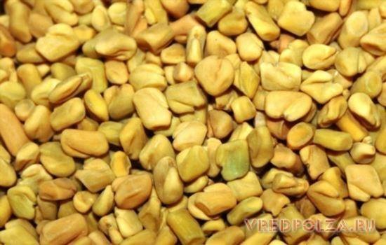 Зерна хельбы помогают справиться со множеством недугов